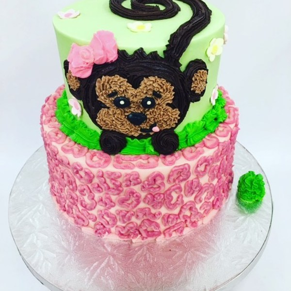 Two Tier Monkey and Pink Leopard Print Cake