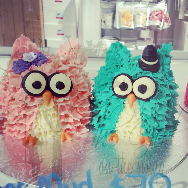 Mr and Mrs Owl Cakes