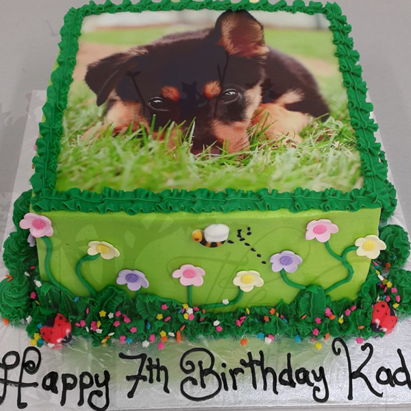 Square Garden Cake with Puppy Edible Image
