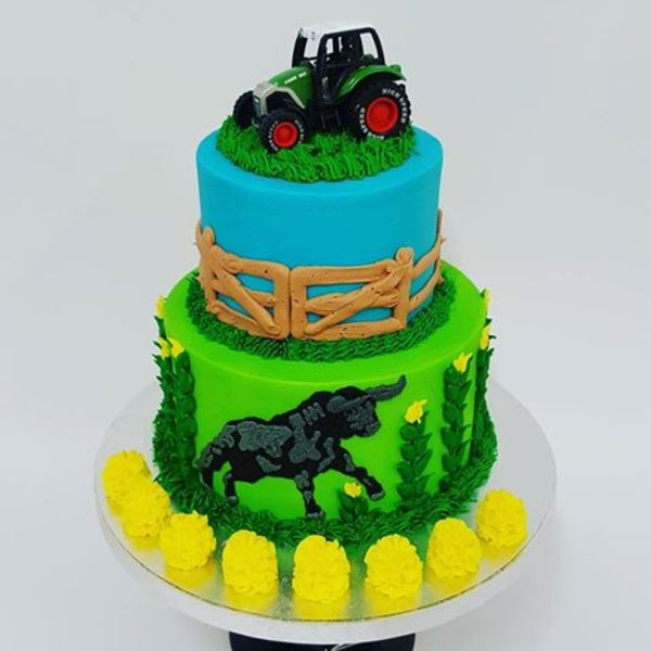 Two Tier Farm cake with Bull and Tractor